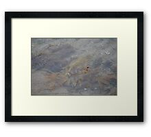cronulla beach rockpools Framed Print