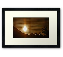 Sunrise Through Bamboo Framed Print