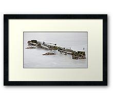 Frozen Decay Framed Print