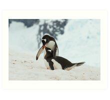 Penguin cuddles Art Print