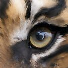 painting of tigers eye by RobsPhotos