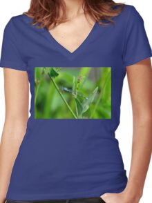 Blue damselfly on green Women's Fitted V-Neck T-Shirt