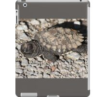 Baby snapping turtle iPad Case/Skin