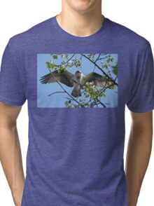 Osprey with Outstretched Wings Tri-blend T-Shirt