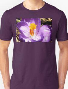 Purple crocus macro Unisex T-Shirt