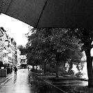 Walk in the rain by Sigrid  Kleinecke