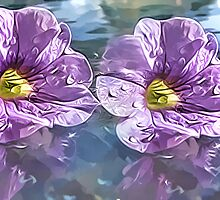 Reflections  by Brenda Boisvert