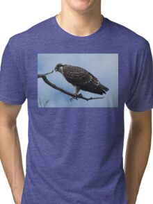 Wild Osprey Tri-blend T-Shirt