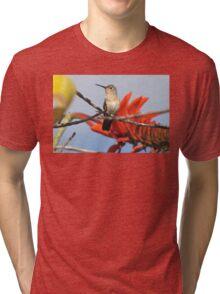 Buffy Hummingbird 1 Tri-blend T-Shirt