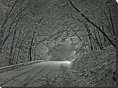 Winter wonders - Bolechowice (POLAND) - New Year 2004. by Brown Sugar. White Merry Christmas Everyone . F*** ,Favorites: 23 Views: 3671 .  Tvm! Challenge Top Ten Winner in Inspired Art Group. by © Andrzej Goszcz,M.D. Ph.D