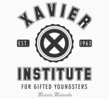 Xavier Institute by isasaldanha