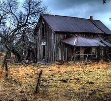 A Long Neglected Dwelling in Coleman County, Texas by Terence Russell