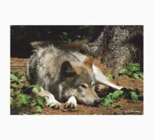 Timber Wolf Chilling Out Kids Clothes