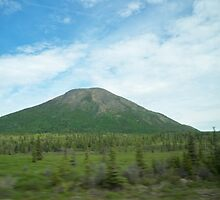Donnelly Dome, AK by Kyla Deisler