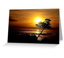 LEANING TREE SILHOUETTE Greeting Card