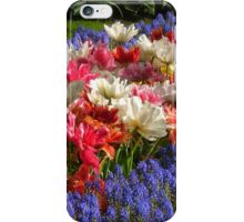 Dutch Colours iPhone Case/Skin