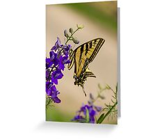 The Beauty  Greeting Card
