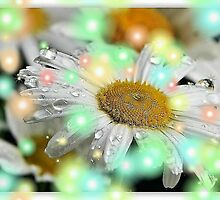 Lighted Daisy by RoseMarie747