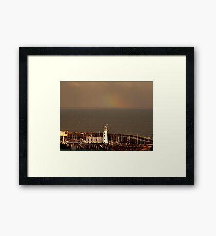 In the Light Framed Print