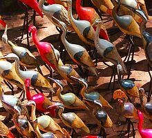 Phalacrocorax carbo birds in Nairobi, Kenya by Atanas Bozhikov NASKO