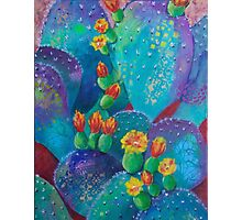 Joyful Prickly Pear Photographic Print