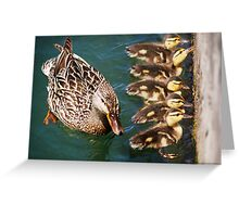Getting Your Ducks In A Row.... Greeting Card