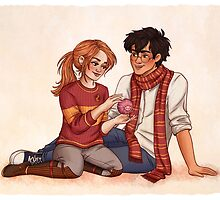 Harry and Ginny by susannesart
