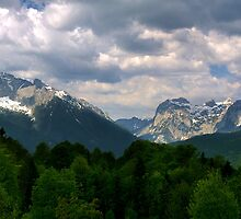 View from Obersalzberg by Susan Dailey