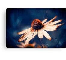 Flowers Indigo Canvas Print