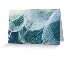 Wispy #3 Greeting Card