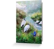 The Hillsborough River- Birds of a Feather Greeting Card