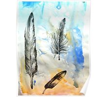 bird feather Poster