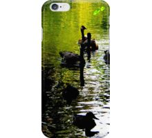 Low light in the shadows iPhone Case/Skin