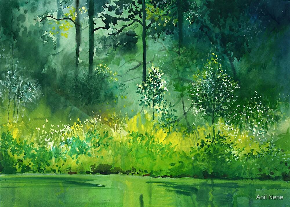 Light n Greens by Anil Nene