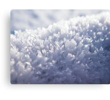 The Ice Crystals Canvas Print