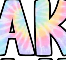 Crane Lake Camp Rainbow Tie Dye Sticker