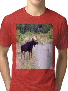 Bull Maine Moose Tri-blend T-Shirt