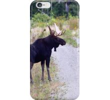 Bull Maine Moose iPhone Case/Skin