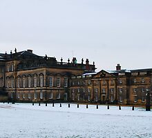 Wentworth Woodhouse Estate by Paul  McIntyre