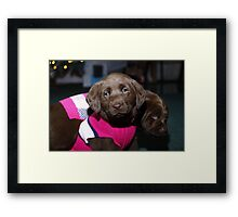 Bella and Cocoa Framed Print