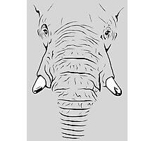 Elephant Skin Photographic Print