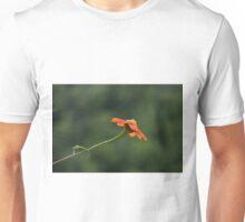 Self Explanatory Unisex T-Shirt