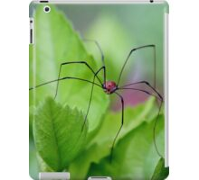 Daddy long legs iPad Case/Skin