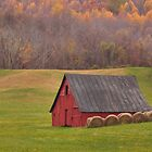 Barn and hay bales in Virginia farm field by David Chesluk