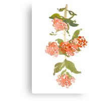 Pink Watercolor Garden Flowers Canvas Print