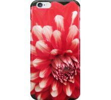 Bicolor dahlia iPhone Case/Skin