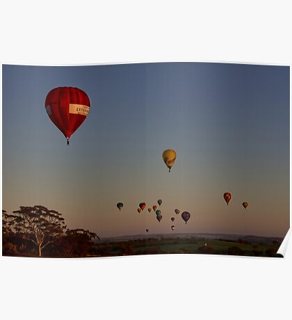 Hot Air Balloons Poster