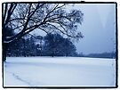 """Drive-by Shooting #18: Waveny's Winter Blues by Christine """"Xine"""" Segalas"""