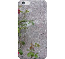Red Roses On Grey iPhone Case/Skin