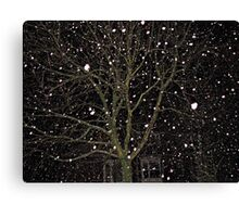 Falling Snow - Night Scene Canvas Print